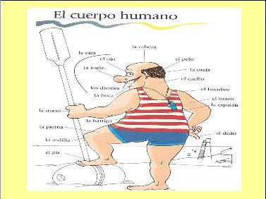 Dizionario per immagini pdf free programs utilities and for Traduzione da spagnolo a italiano